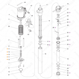 Graco T3 SS Transfer Pump Exploded Diagram