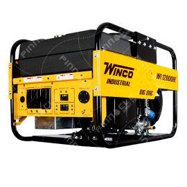 Winco 12 kW Gas Generator